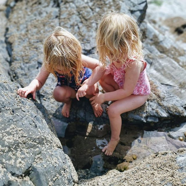 Who doesn't love exploring Rockpools? 🦀 🐚 🐙🐠#Rockpoolholidays #cornwall #watergatebay #cornishholidays