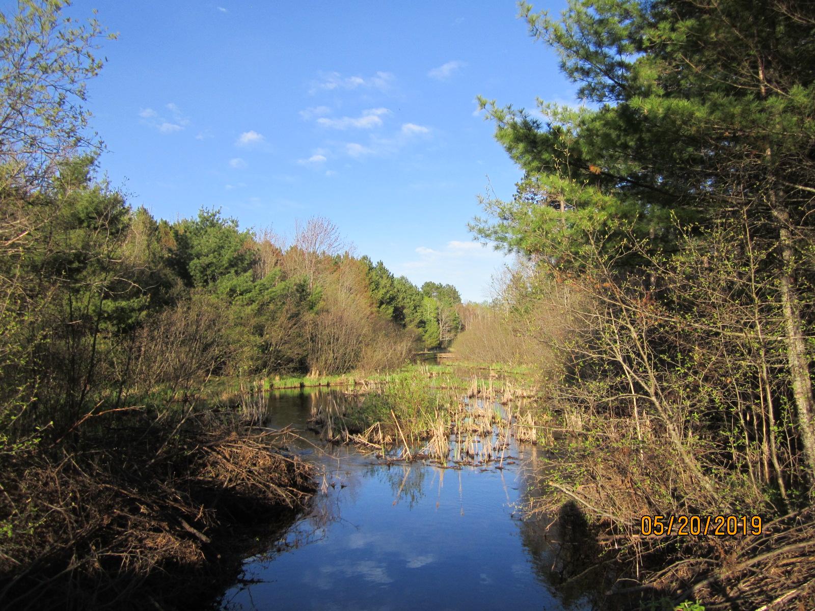Floodwood River.JPG