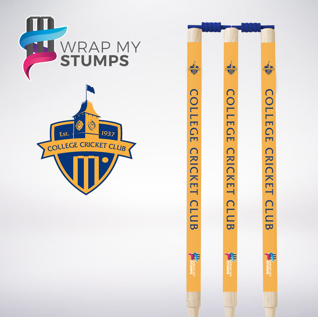 WMS-College-Cricket-Club.jpg