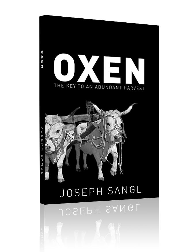 OXEN.jpg
