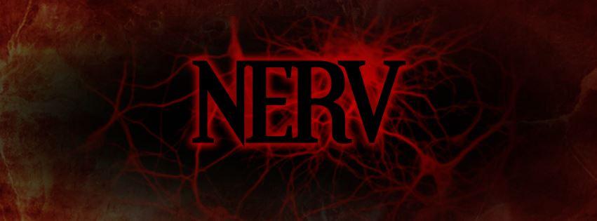 Nerv.jpg