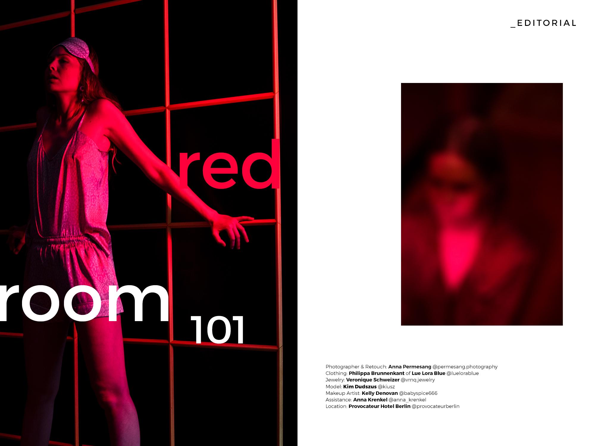 redroom101-title.jpg