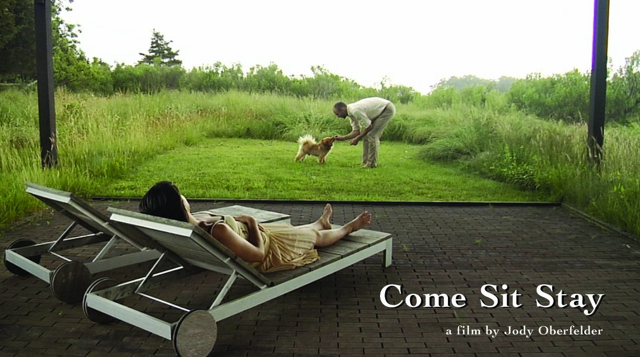Come Sit Stay(1).jpg