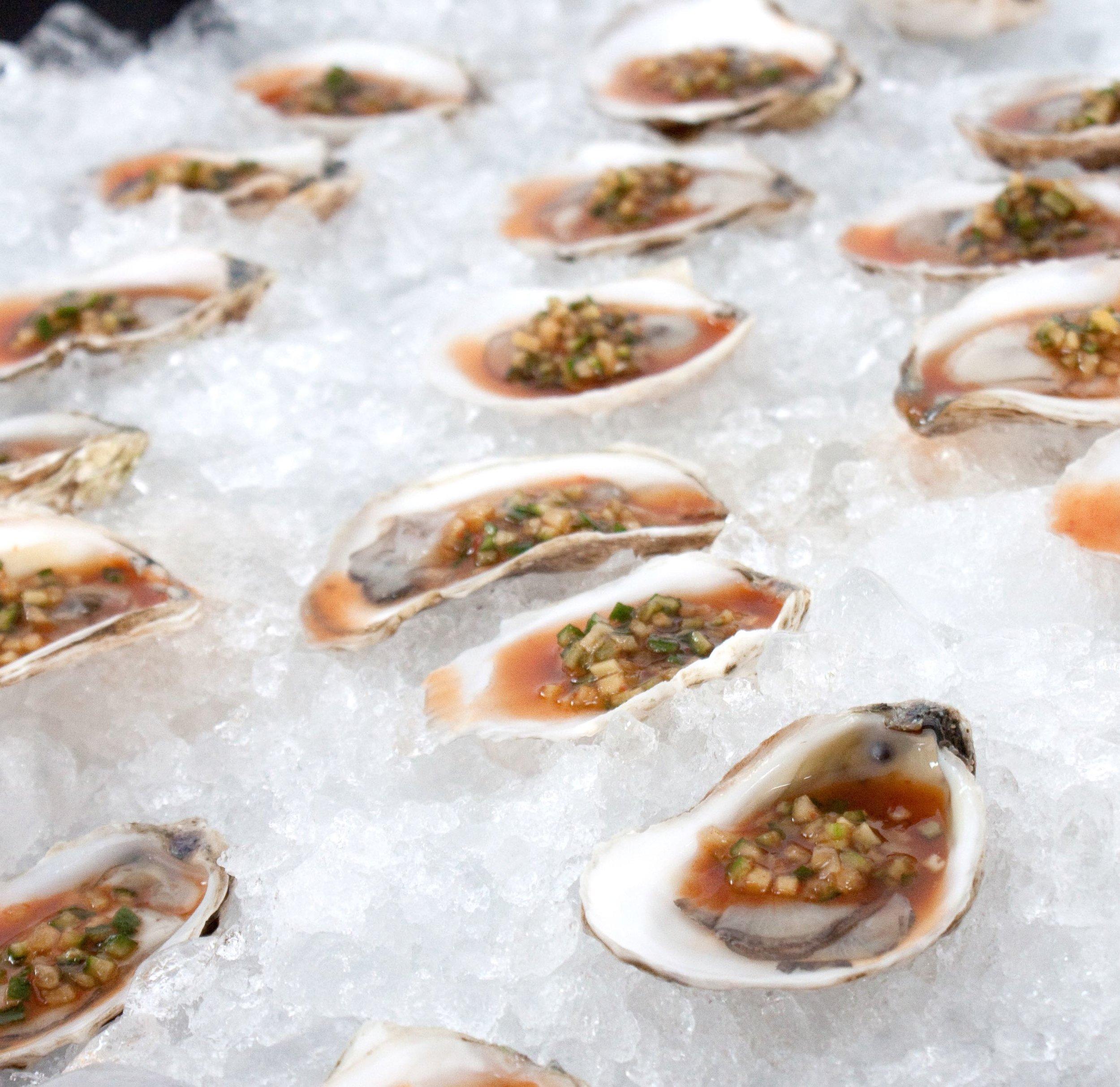 oyster_closeup_sq.jpg