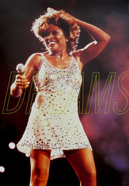 Tina Turner - Wildest Dreams Tour 1996