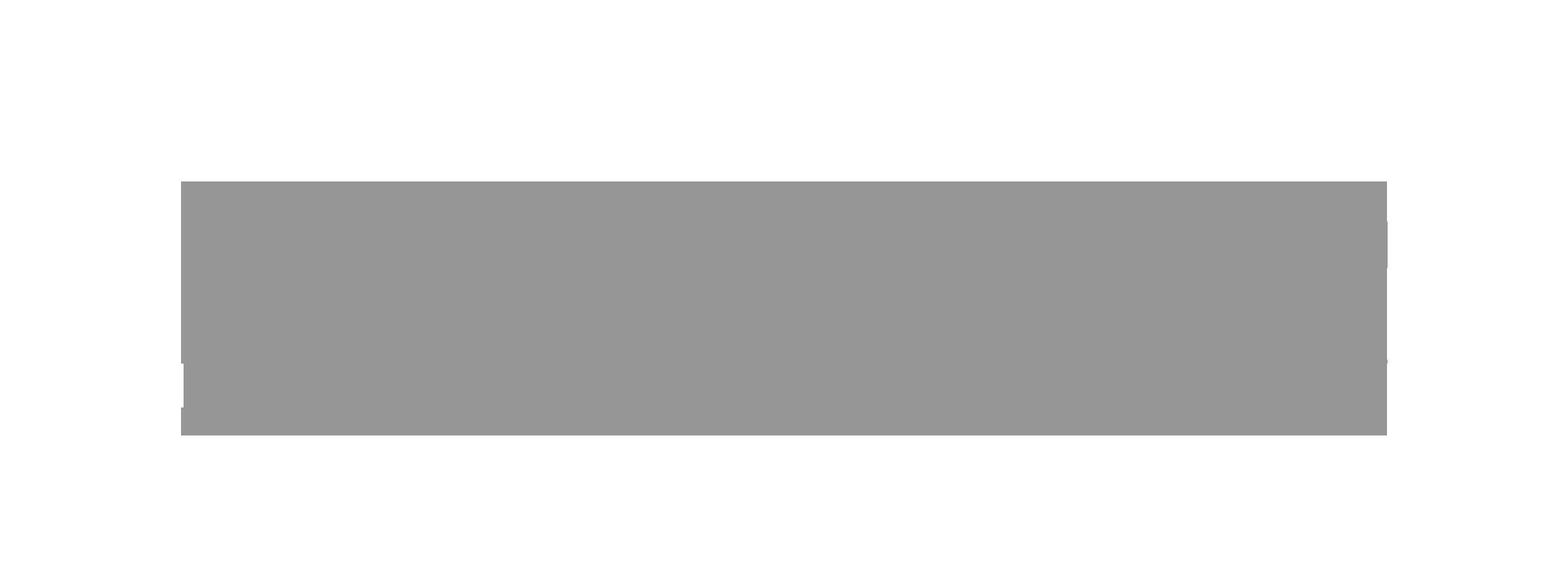 paladinVR_logo.png