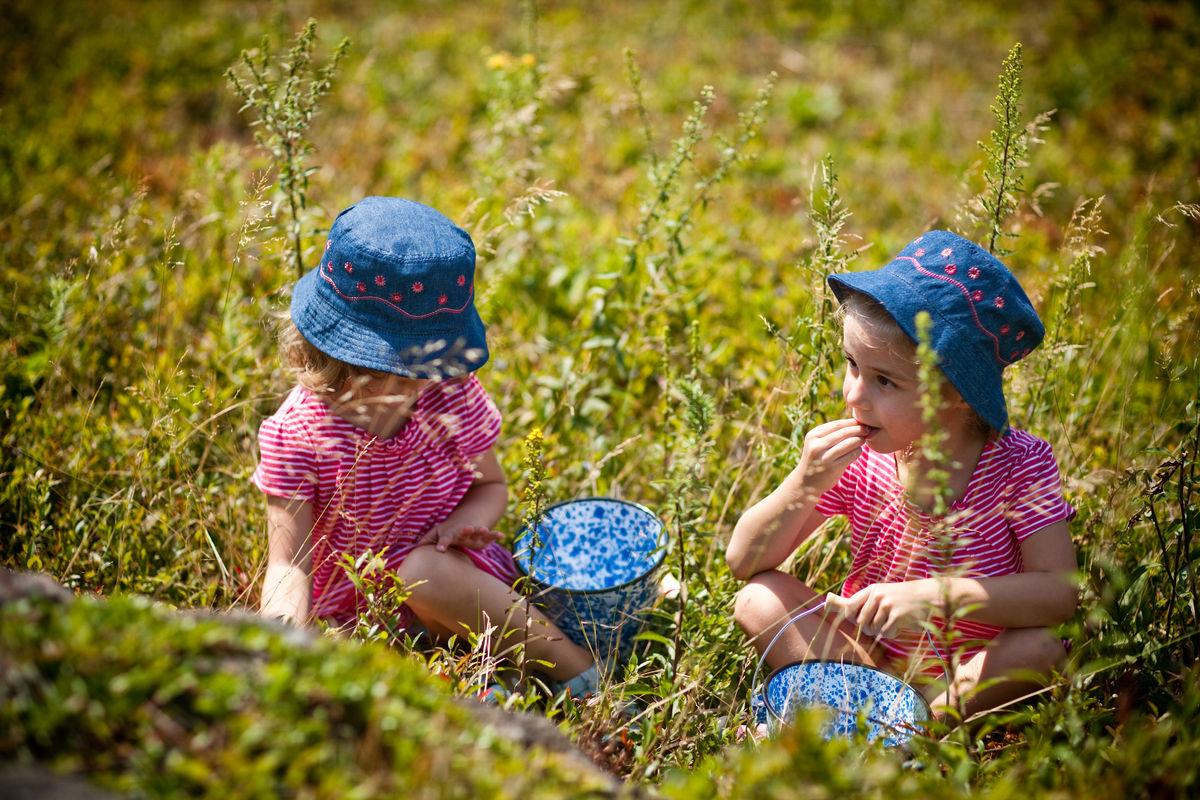 <b>PICKING BLUEBERRIES</b><br>Edie & Sage