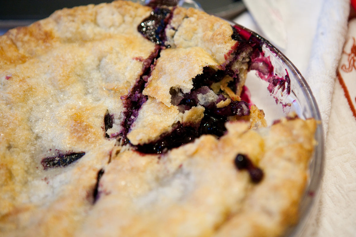 blueberry_picking_portrait_0001.jpg