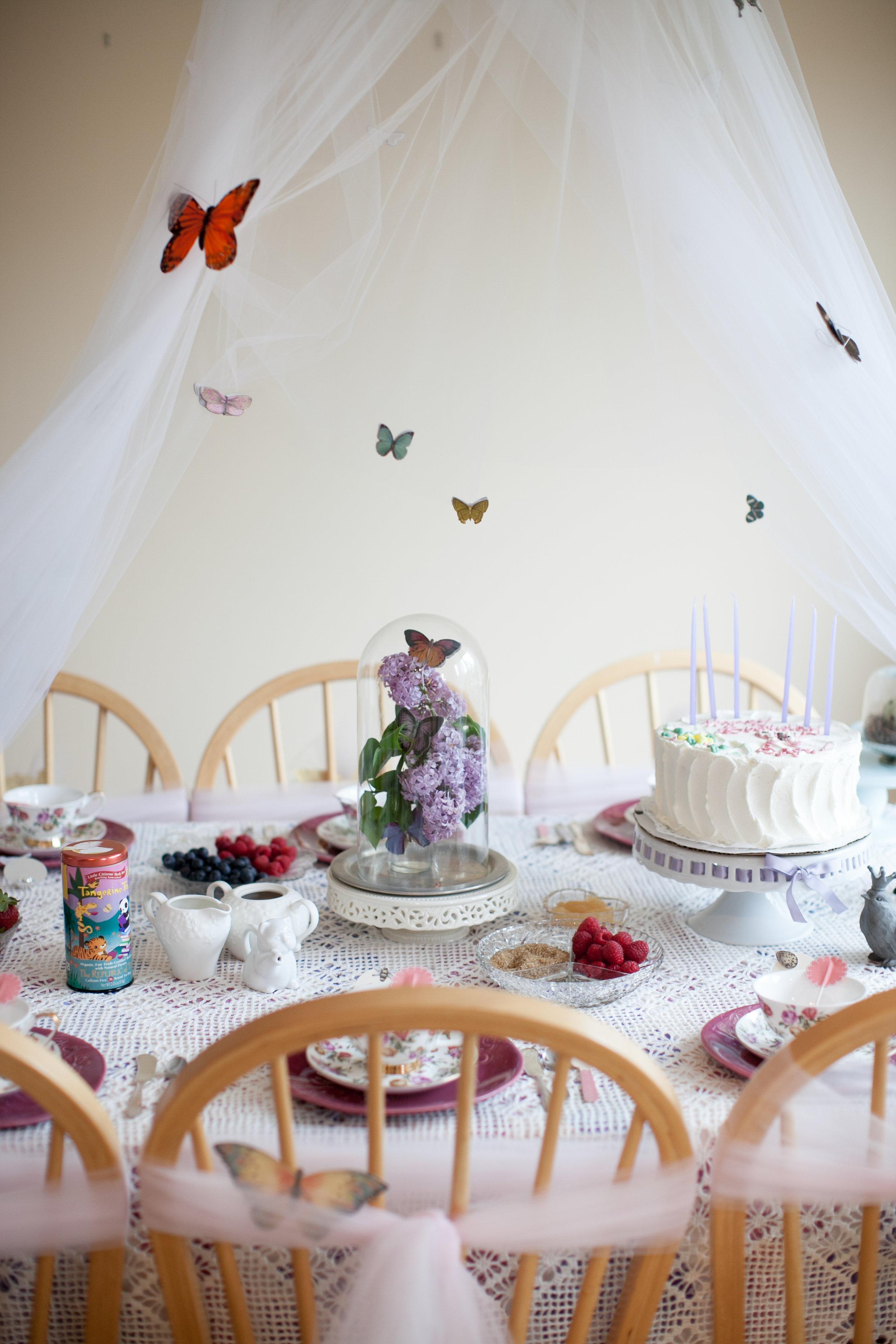 butterfly_tea_party_0014.jpg