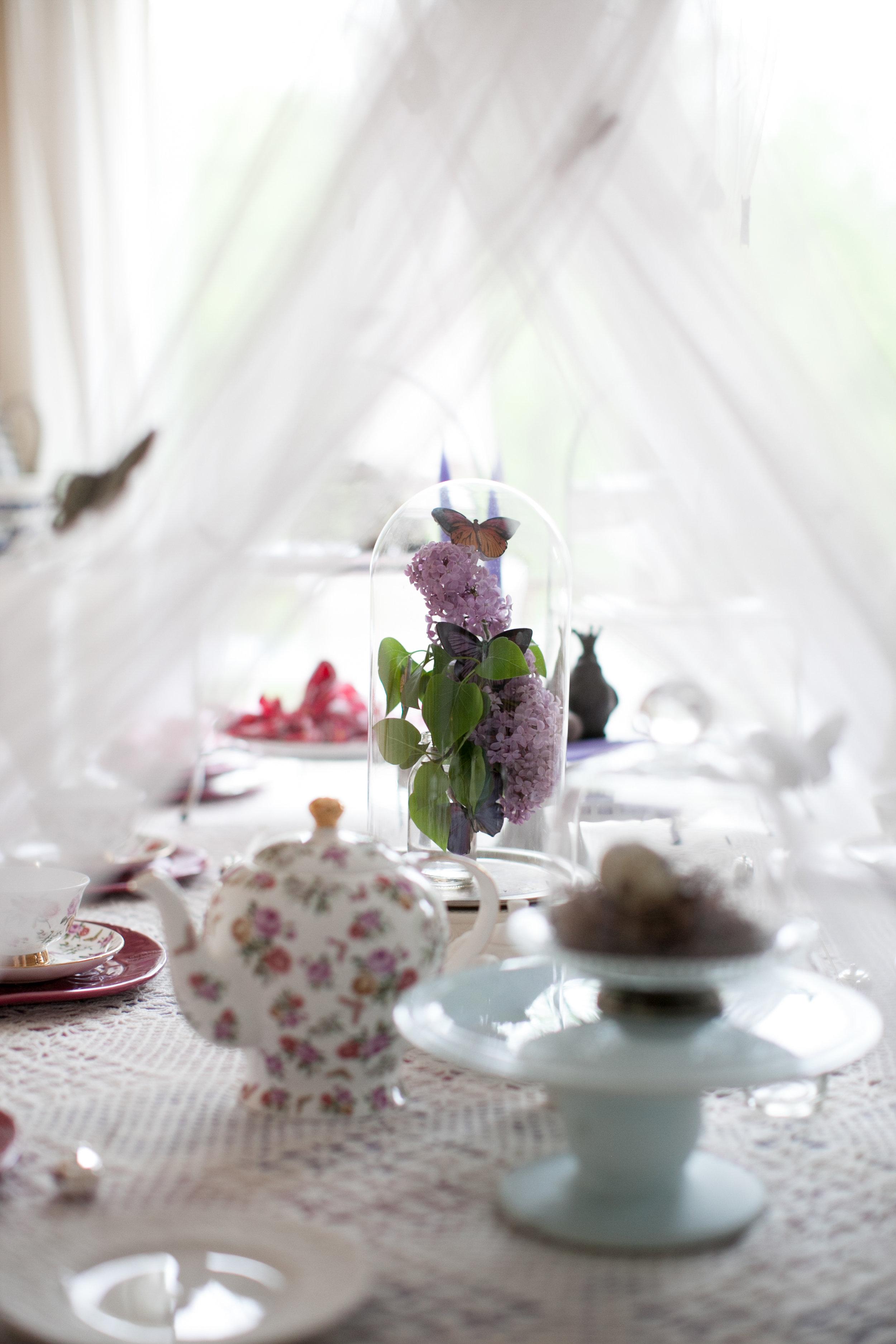 butterfly_tea_party_0015.jpg