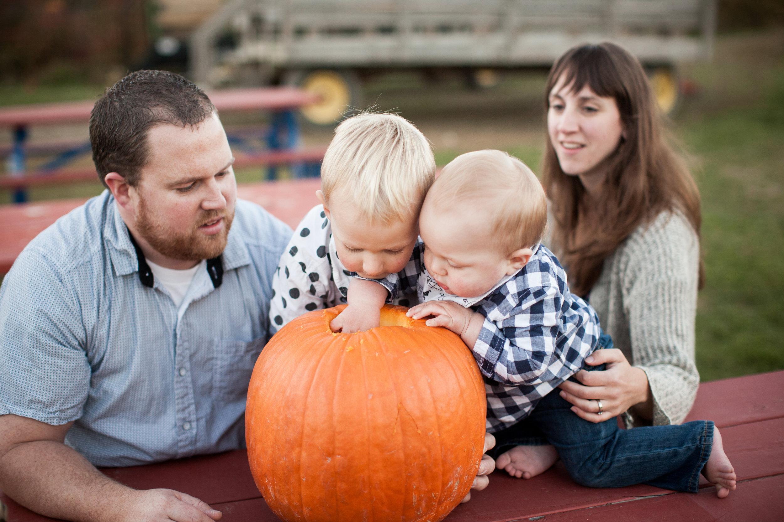 pumpkin_patch_0013.jpg