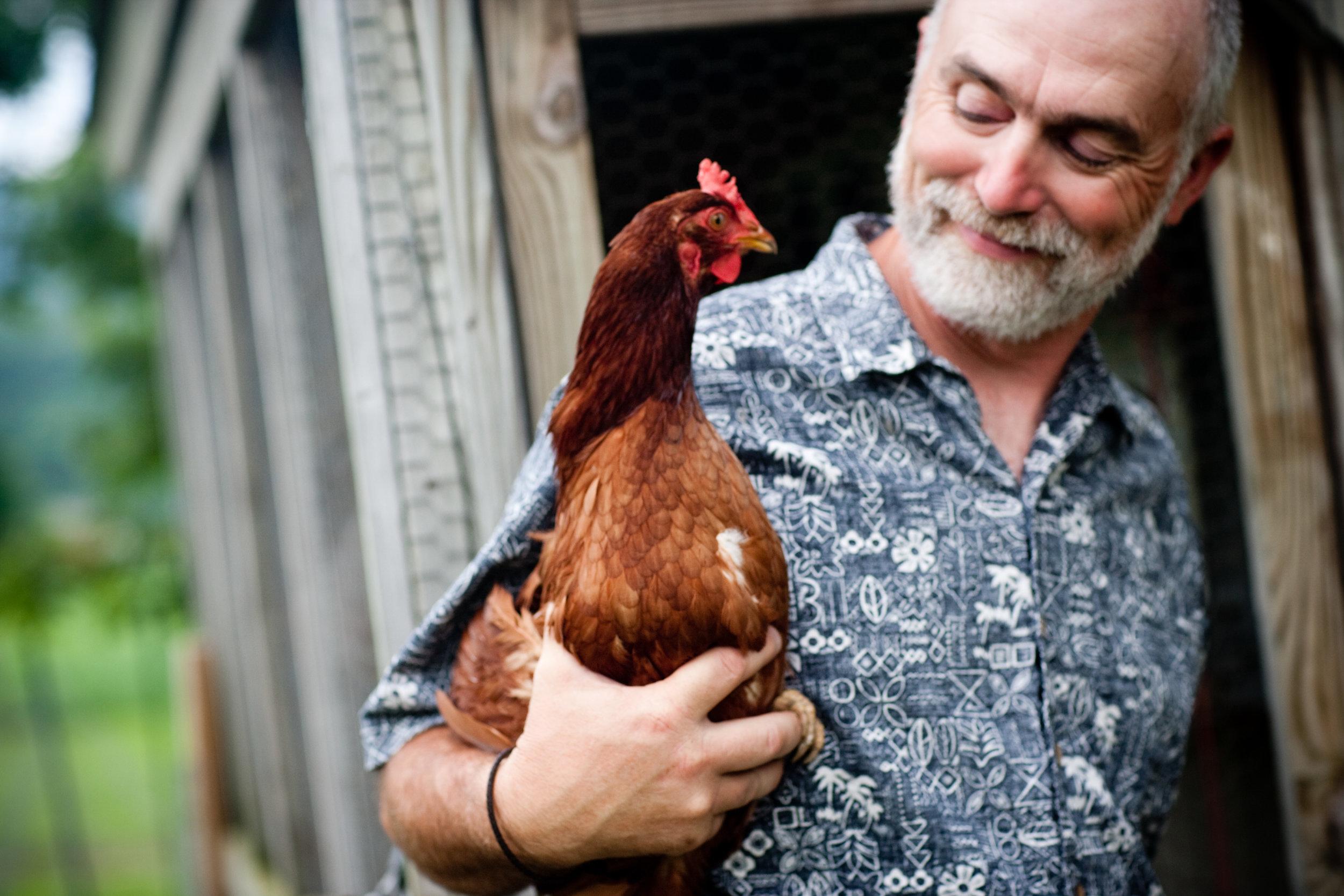 chicken_farmer_portrait_maine
