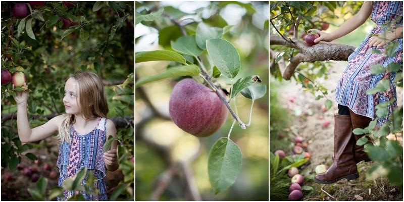 girl-apple-orchard-new-hampshire.jpg