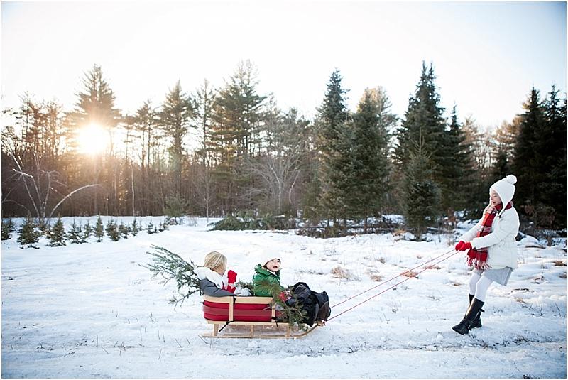 christmas_tree_farm_portrait_maine_0005.jpg