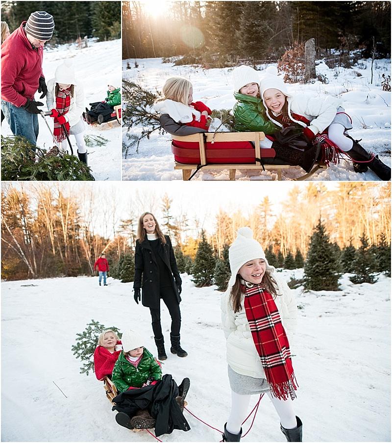 christmas_tree_farm_portrait_maine_0006.jpg