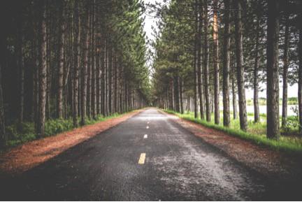 New-Roads-on-the-Journey.jpg