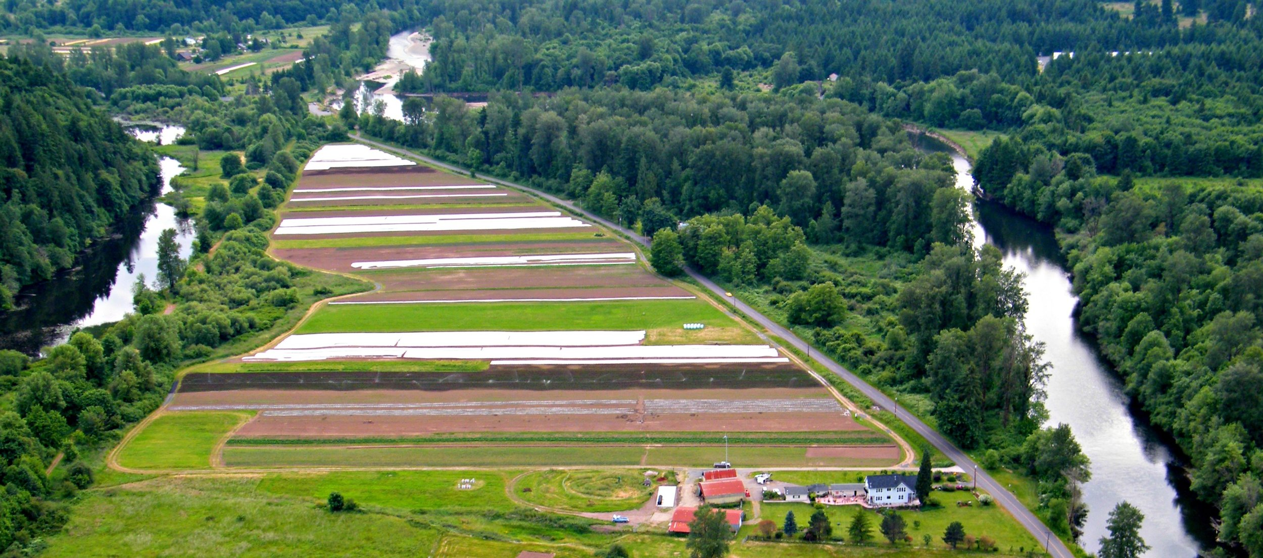 Helsing Junction Farms Aerial View