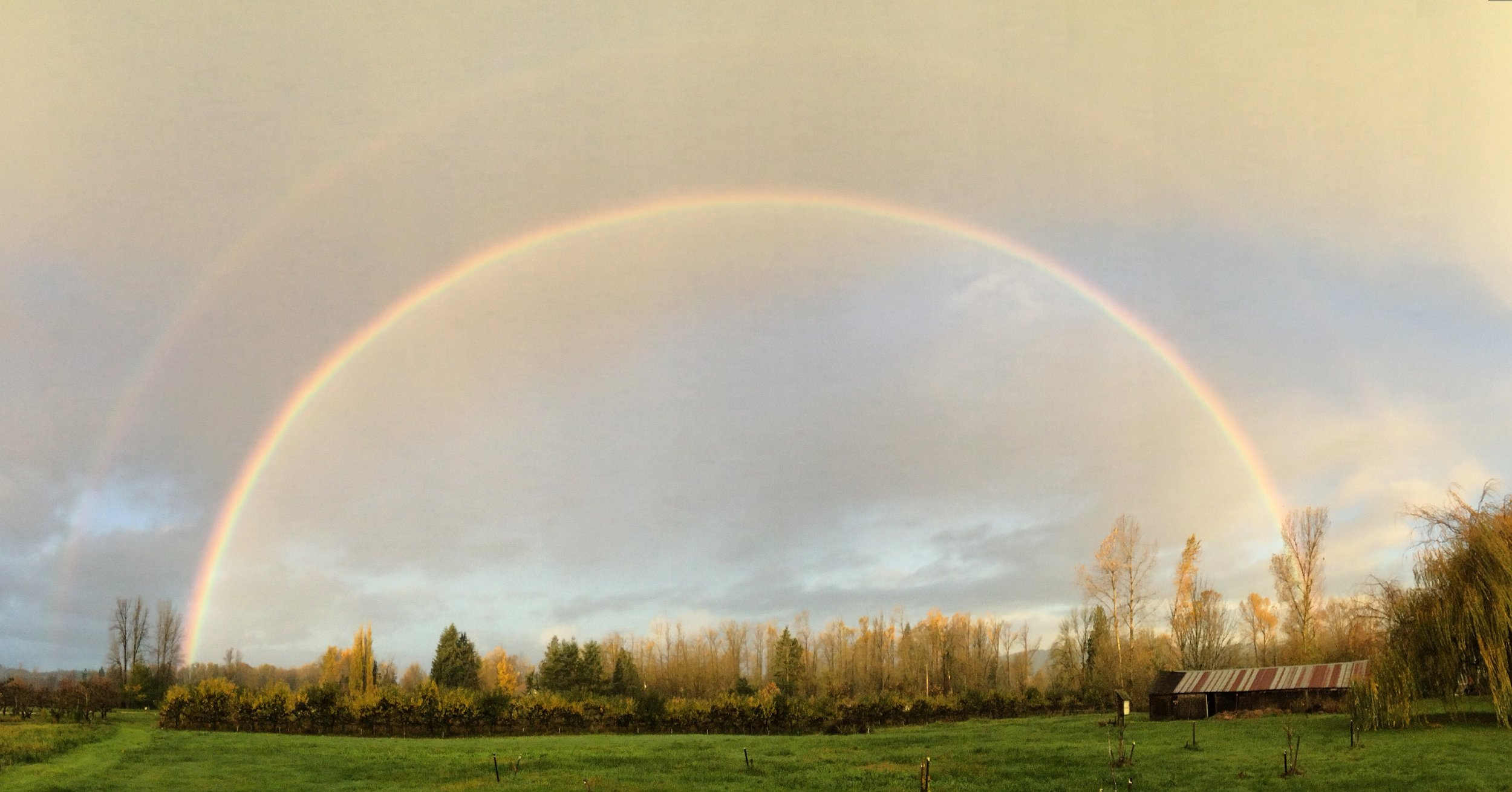 Organic Farming Rainbow