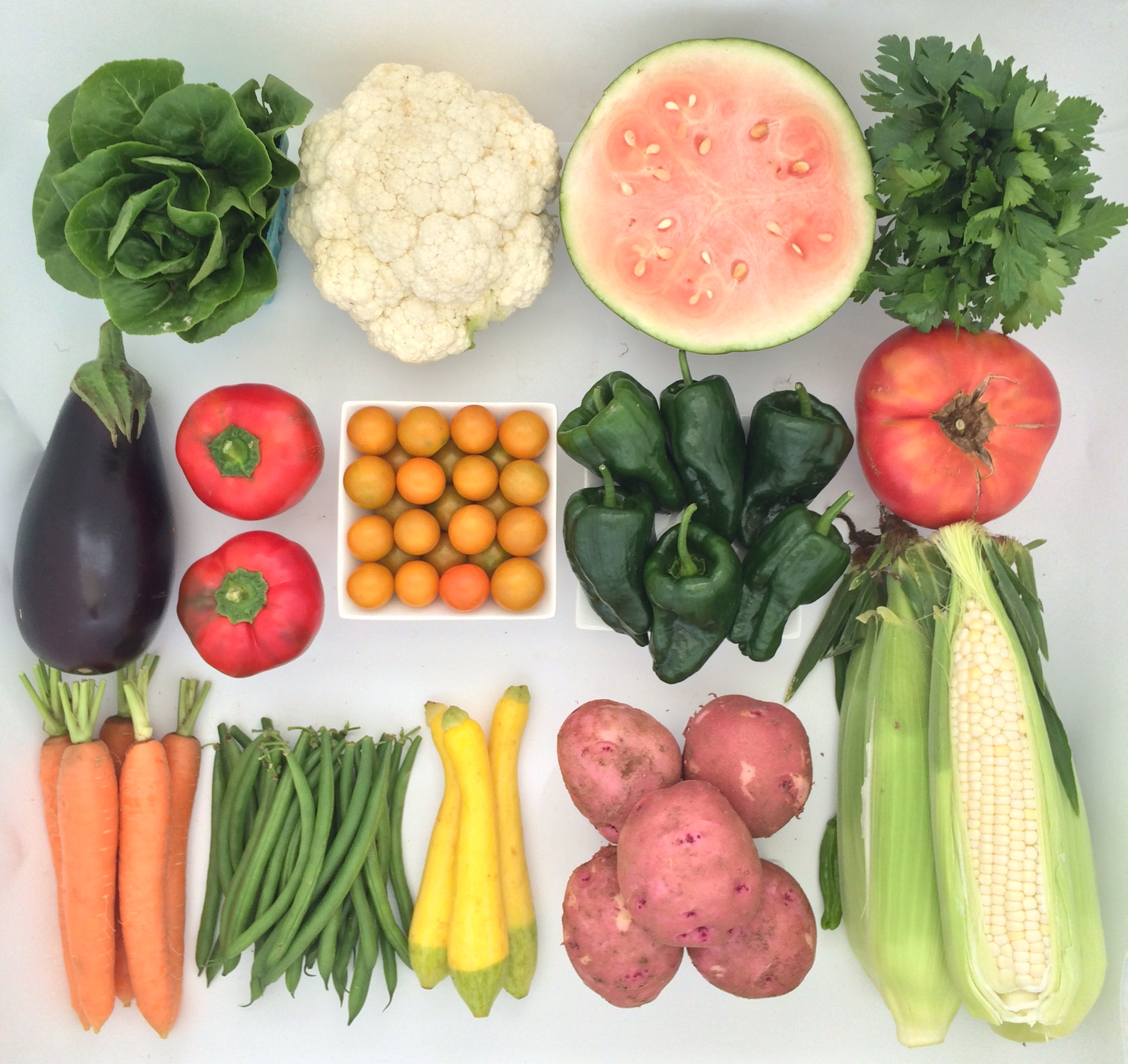 Helsing Junction Farms CSA Large Share