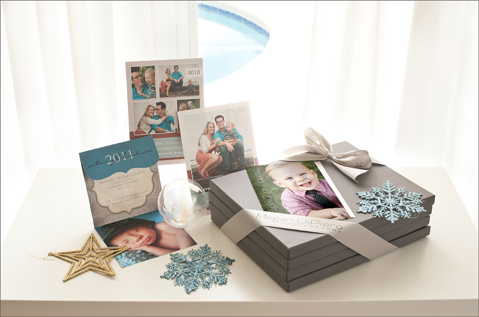 Megan DiPiero Photography {Holiday Family Portrait Promo}