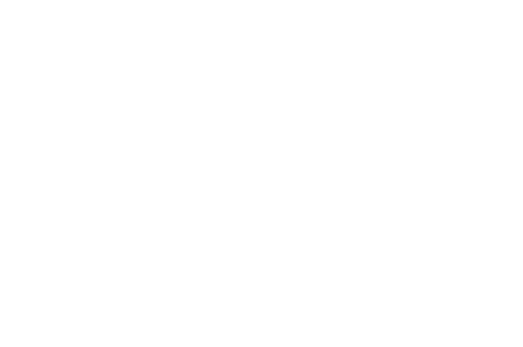 OFFICIAL SELECTION - Transylvania Cinema Awards - 2017.png