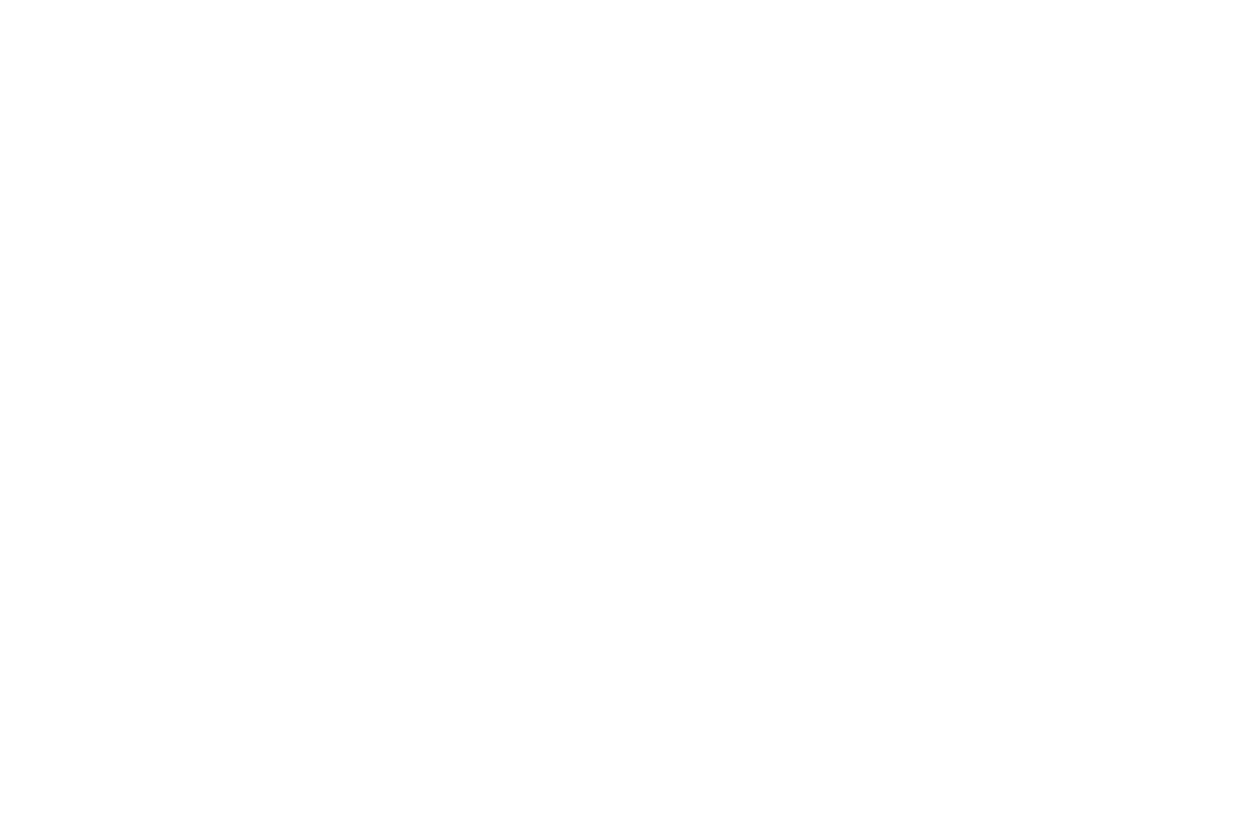 OFFICIAL SELECTION - The West Virginia Mountaineer Short Film Festival - 2018.png