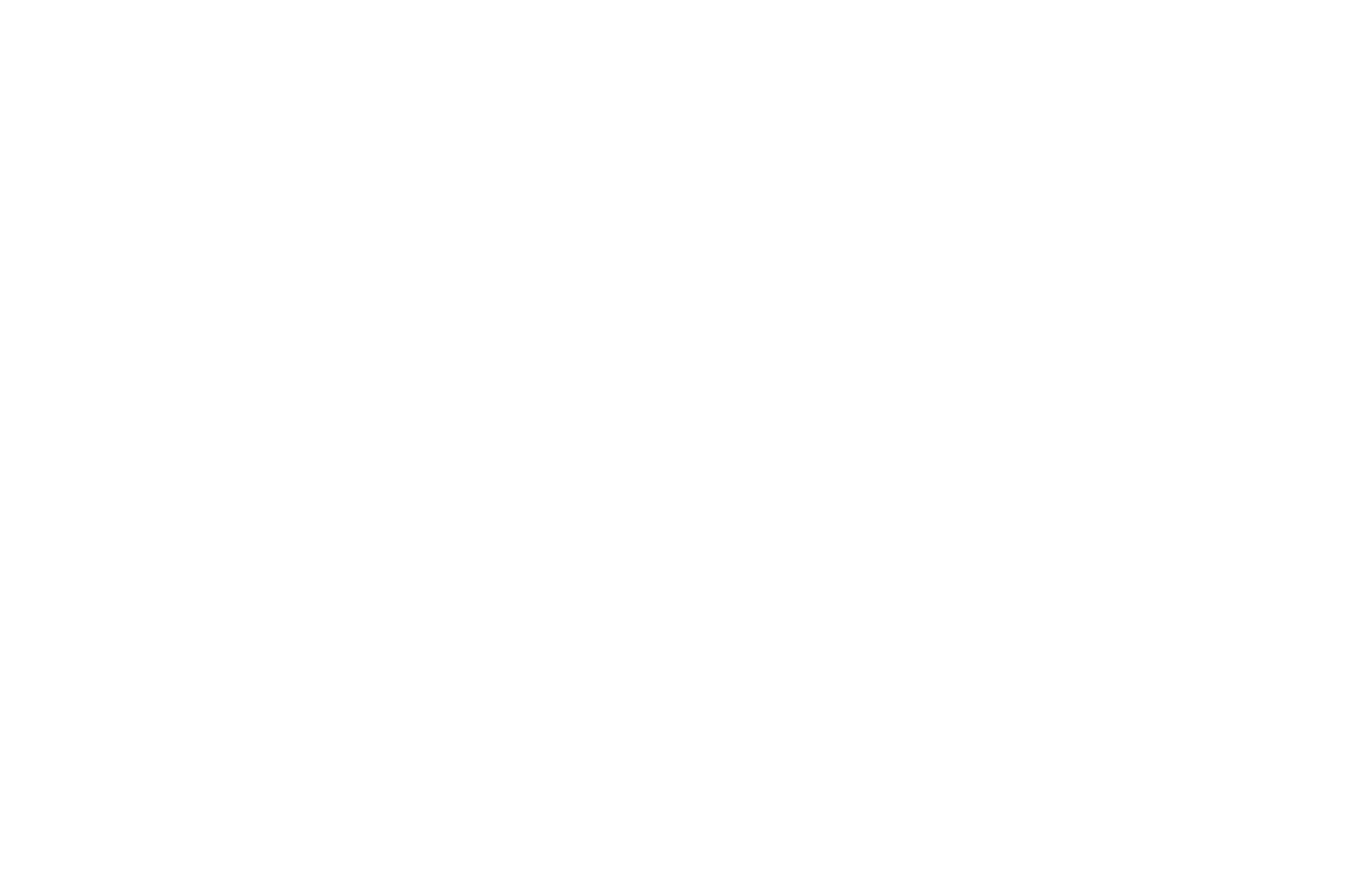 BEST FEATURE FILM - California Music Video  Film Awards - 2019 (bw).png
