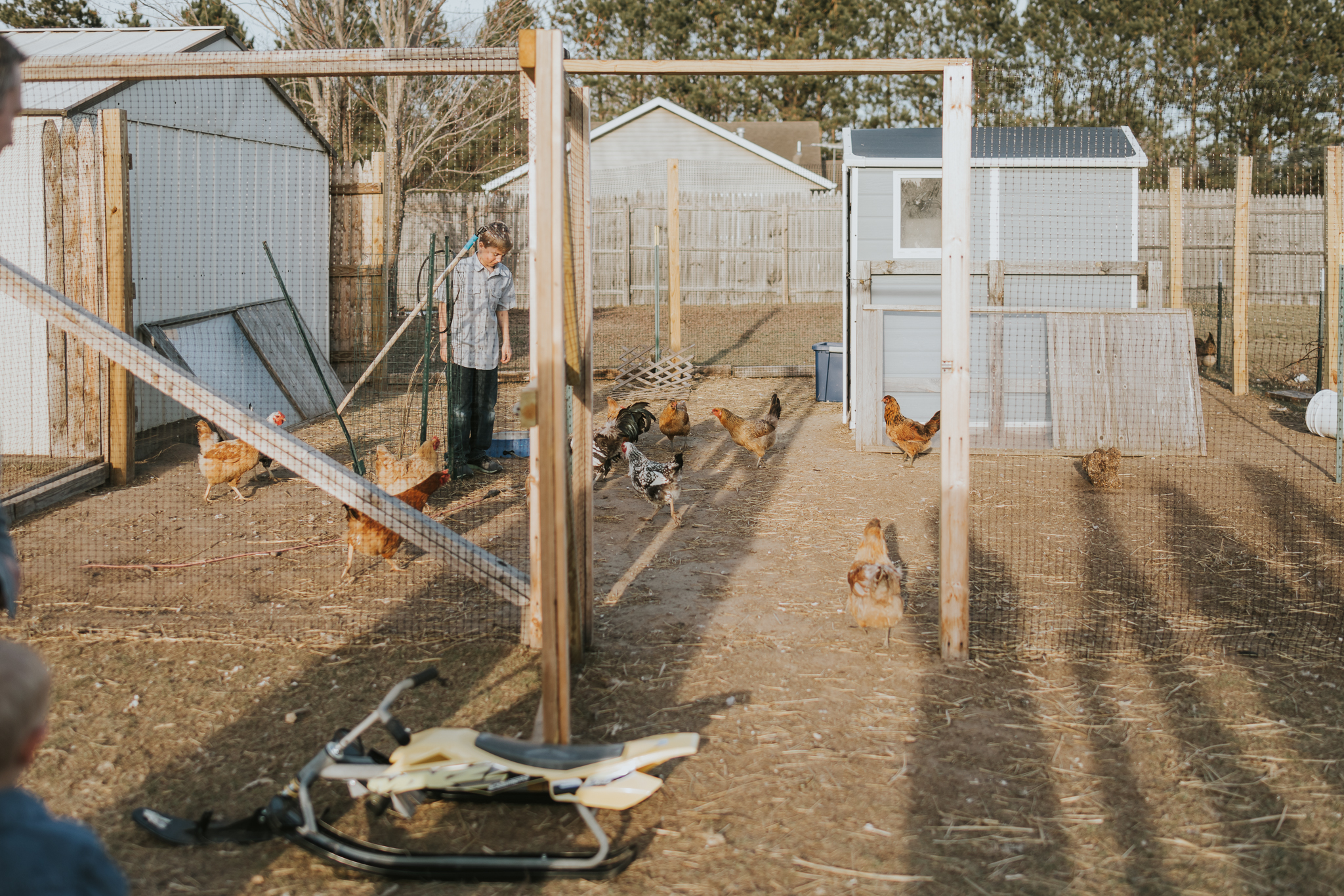 chicken coop with a little boy and chickens - Minnesota Family Photography