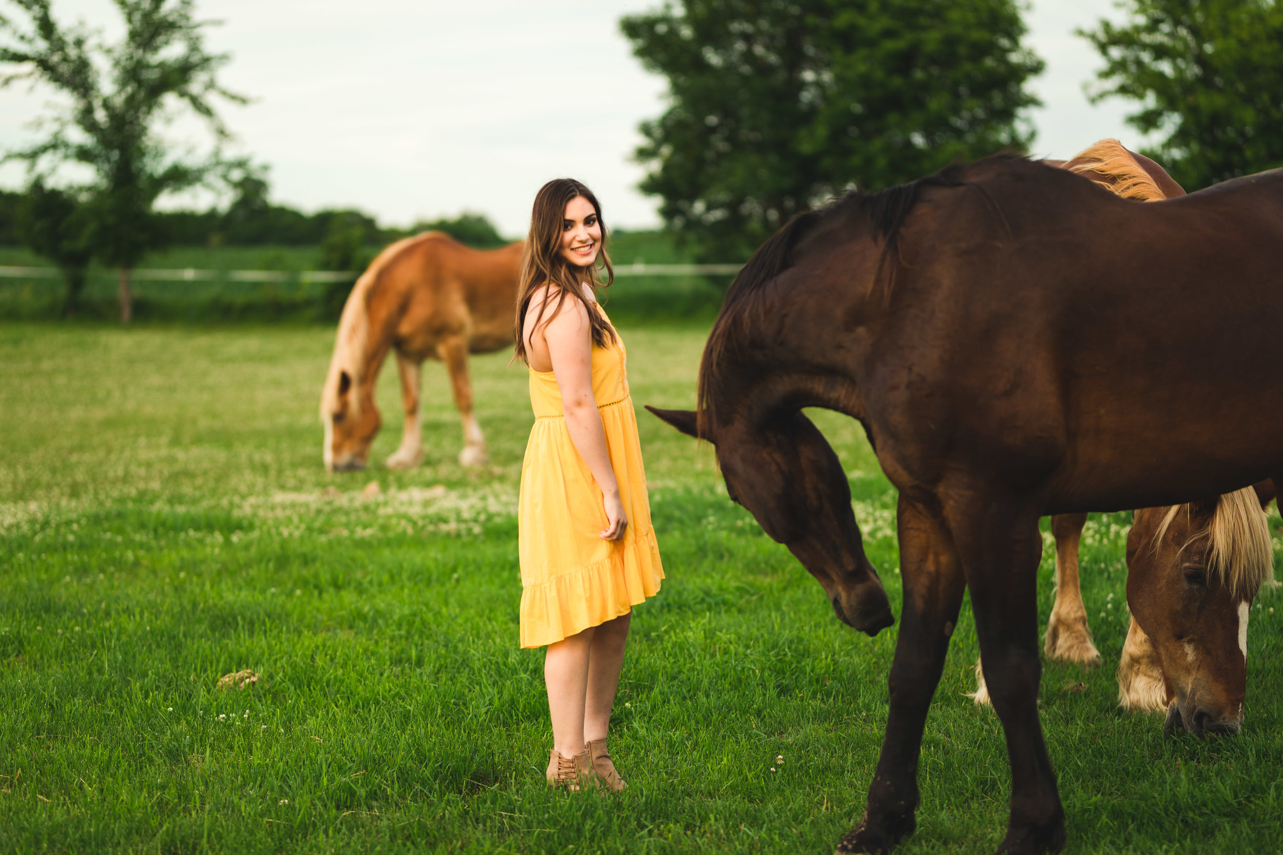 girl in a pasture with horses - Twin Cities Senior Photography