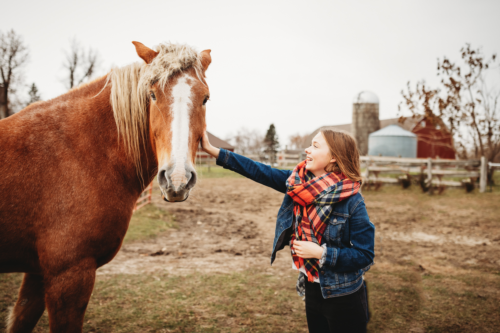 Girl petting horse - Twin Cities family photographer