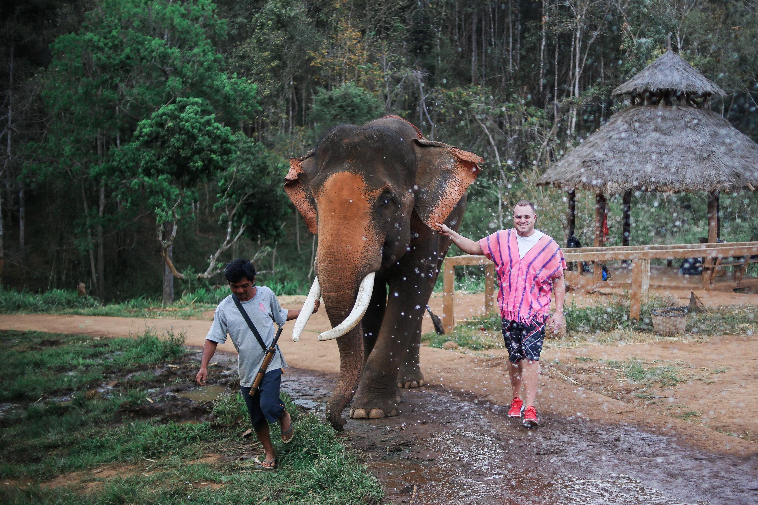 elephant_blog-26.jpg