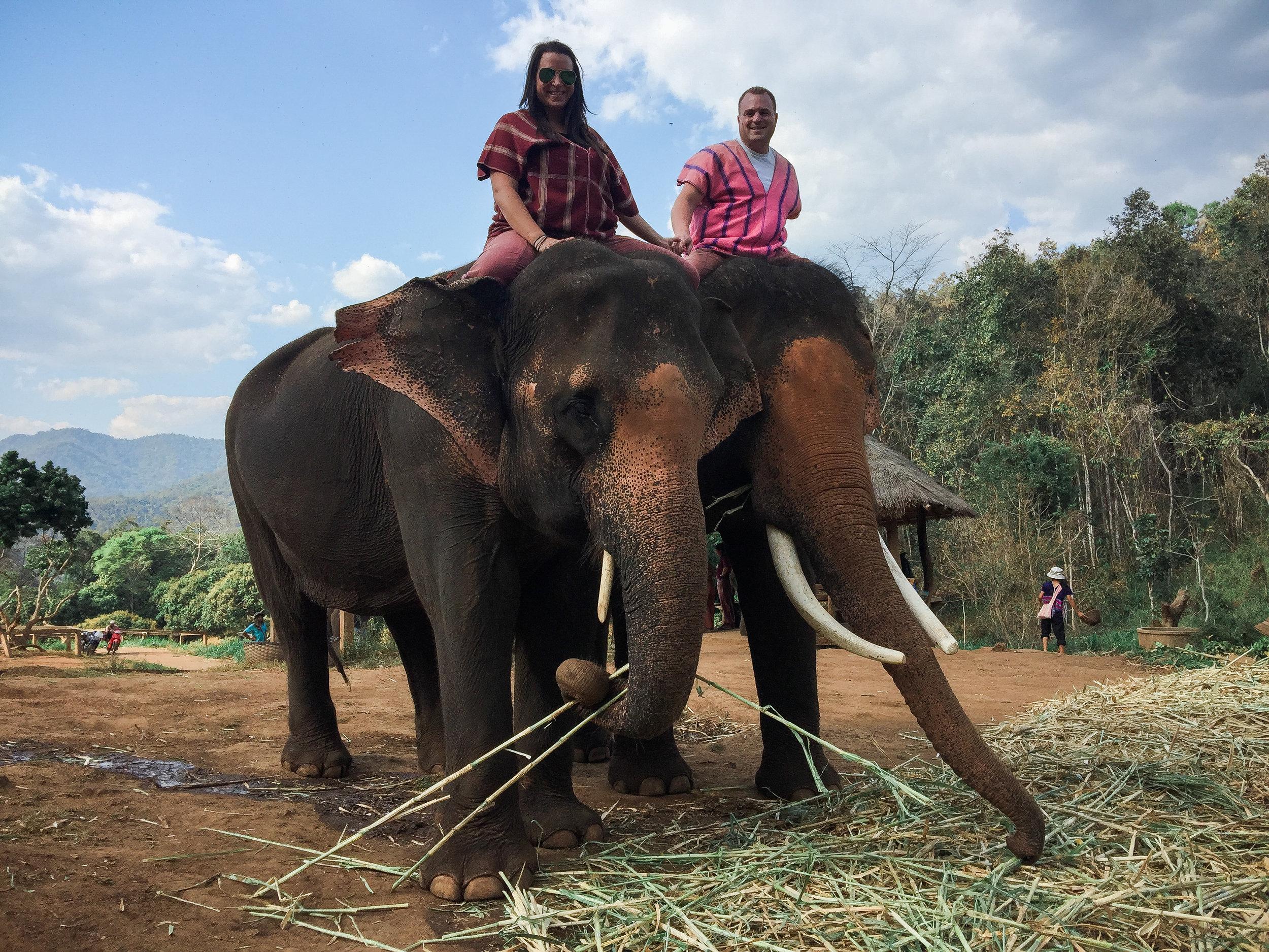 elephant_blog-32.jpg