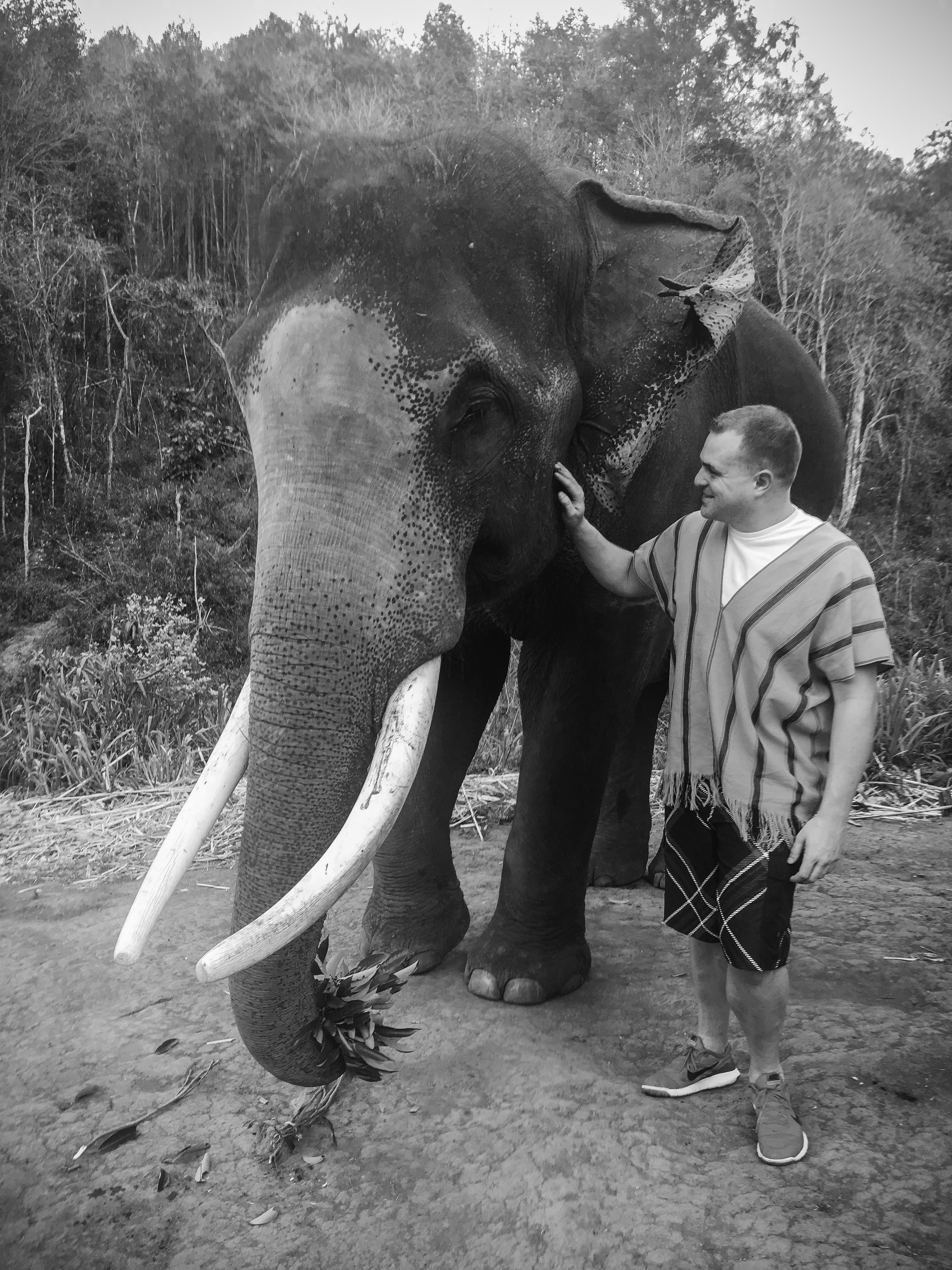 elephant_blog-31.jpg