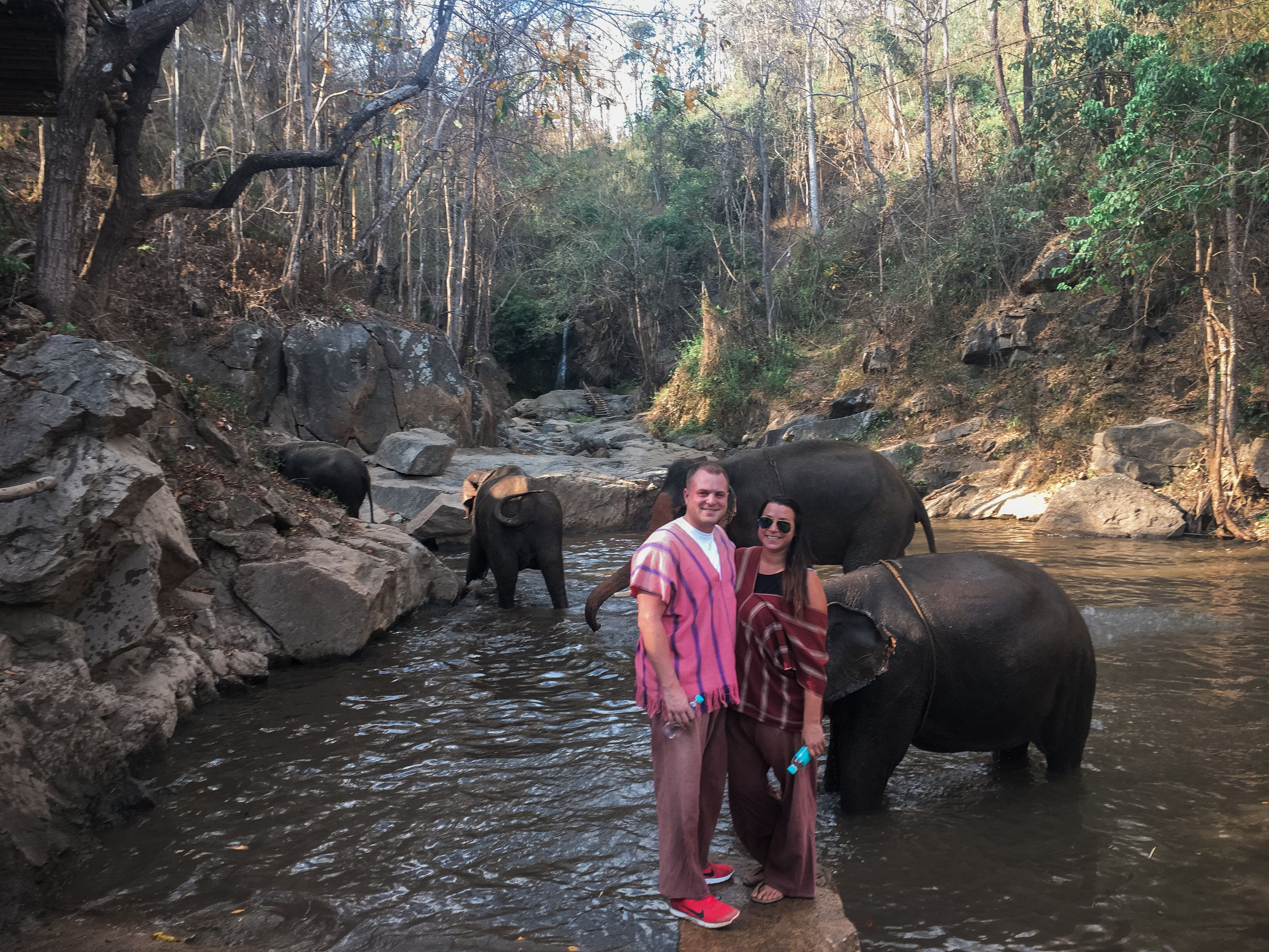 elephant_blog-35.jpg