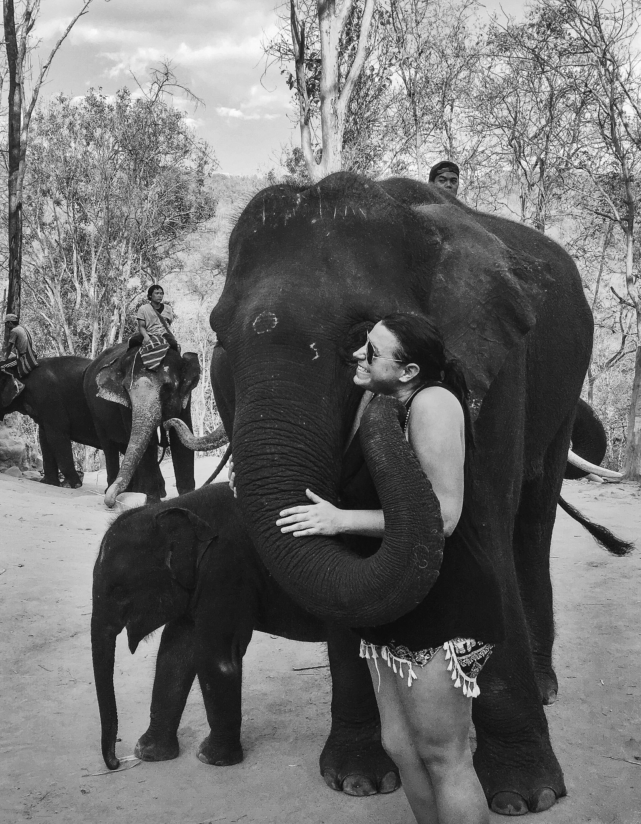elephant_blog-41.jpg