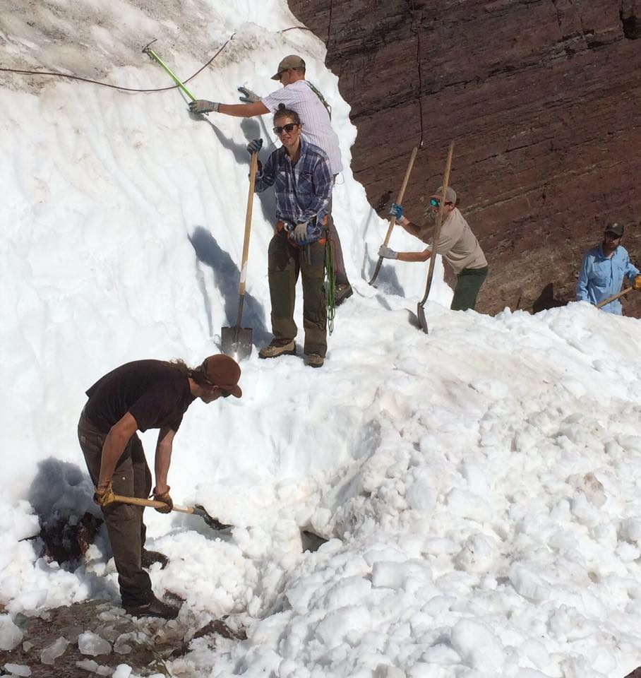 Shoveling the Grinnel Glacier Trail out in spring. Glacier National Park. The crew did 48 miles in 4 days.