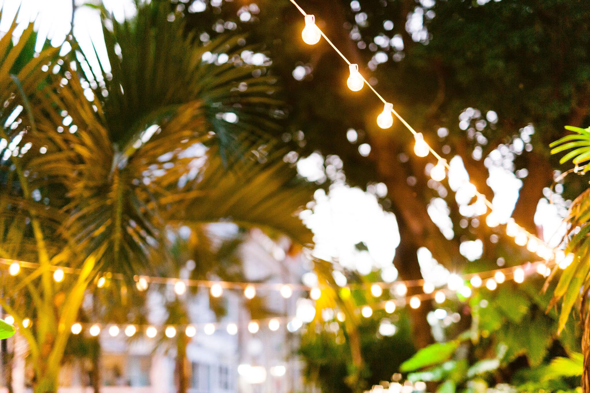 key_west_weddings-0552.jpg