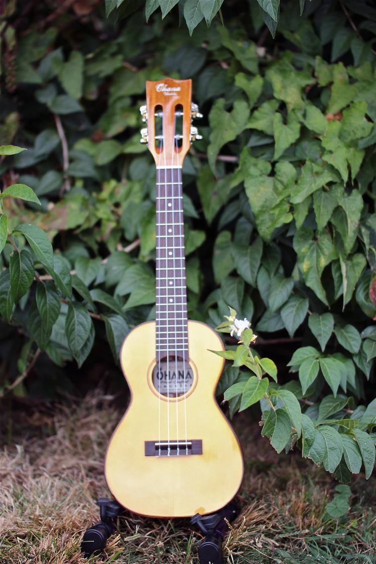 Ohana CK-250G  $319