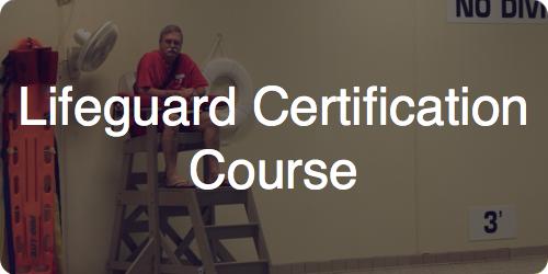 lifeguard cert course