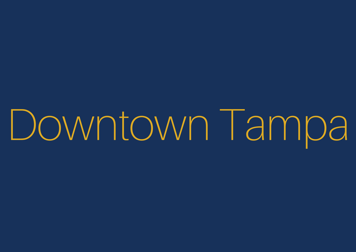 Neighborhoods - Large - Downtown Tampa.png