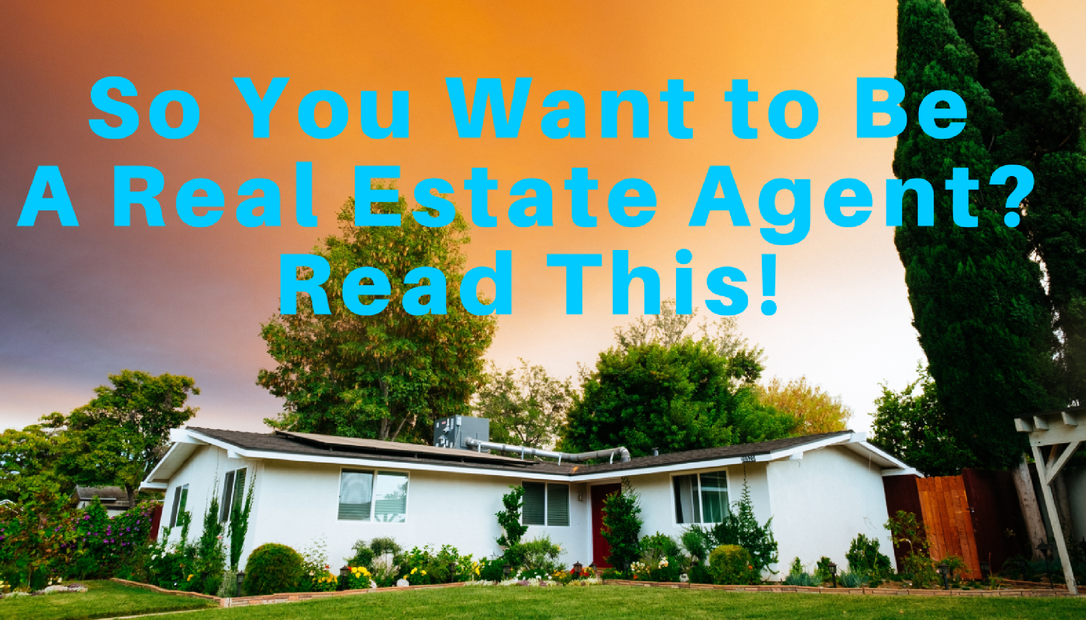 So you want to be a real estate agent?