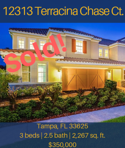 Flyer - 12313 Terracina Chase Ct. (Sold).png
