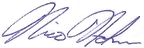 Nico's Signature (Blue) PNG.png