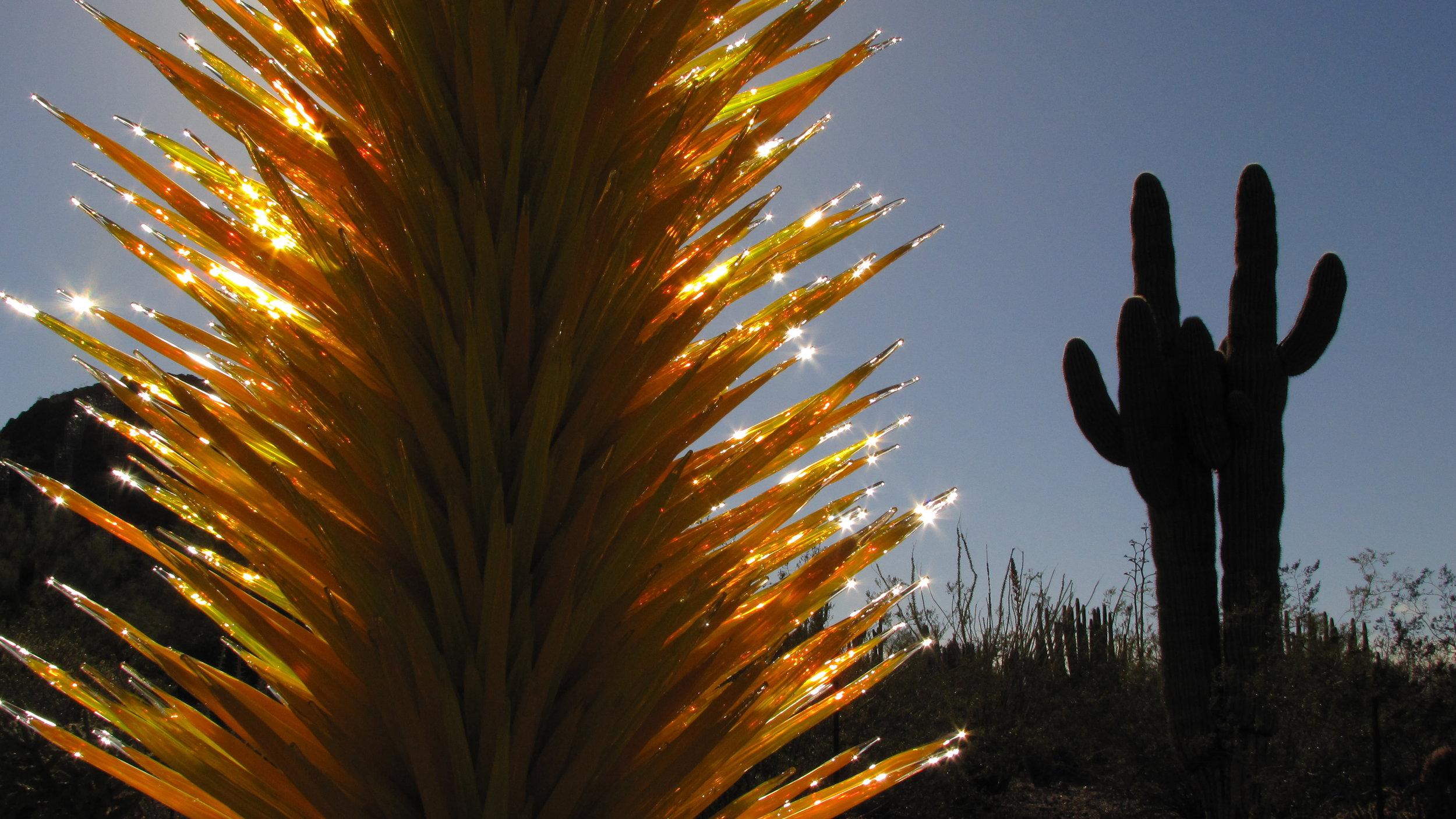 Chihuly's Giant Cactus - Desert Botanical Gardens Phoenix, AZ