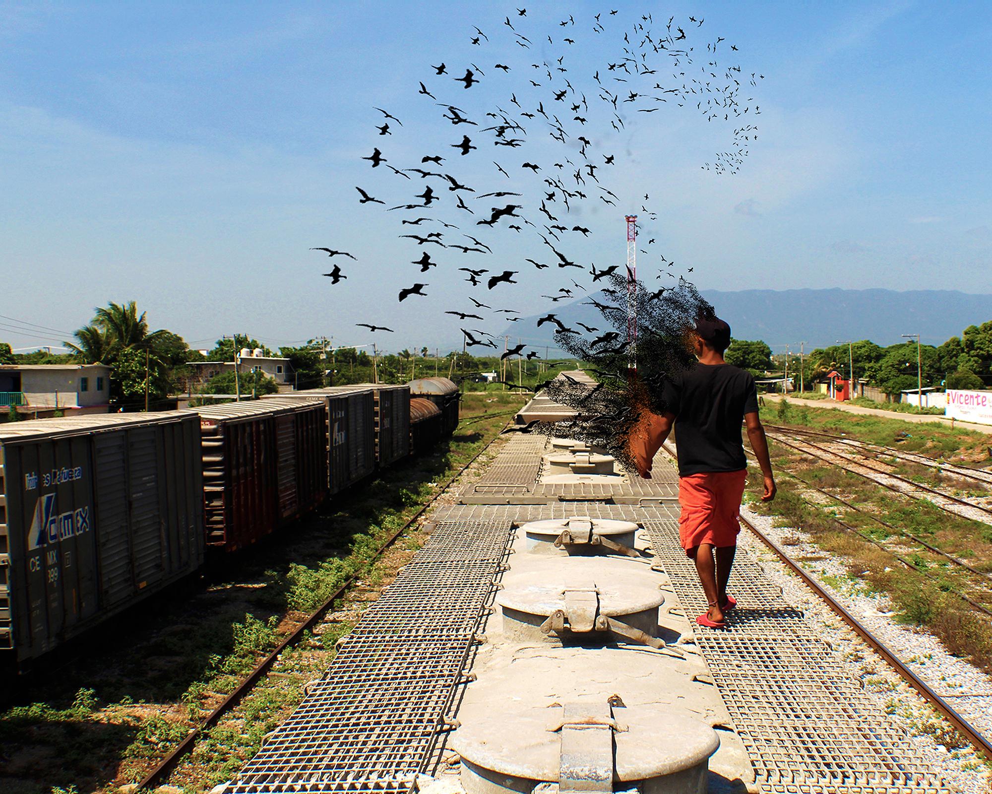 migrar es ser libre