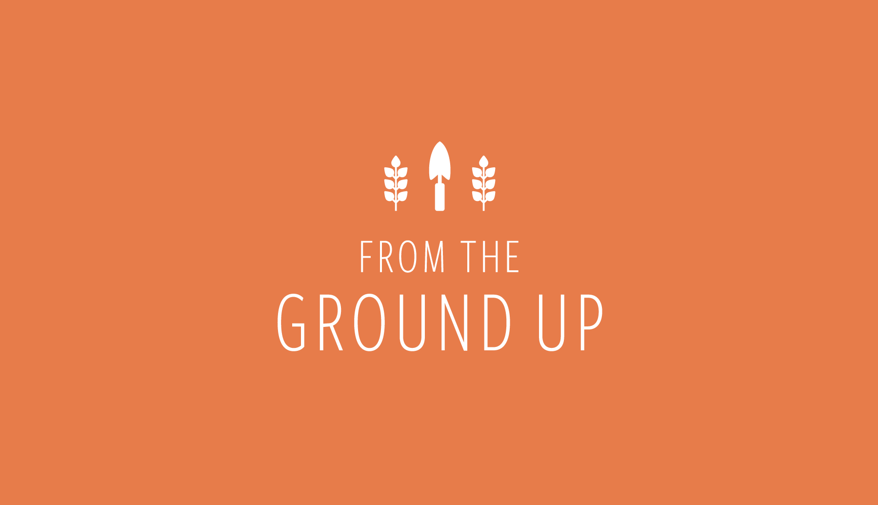 FROM THE GROUND UP    Branding | Website Design
