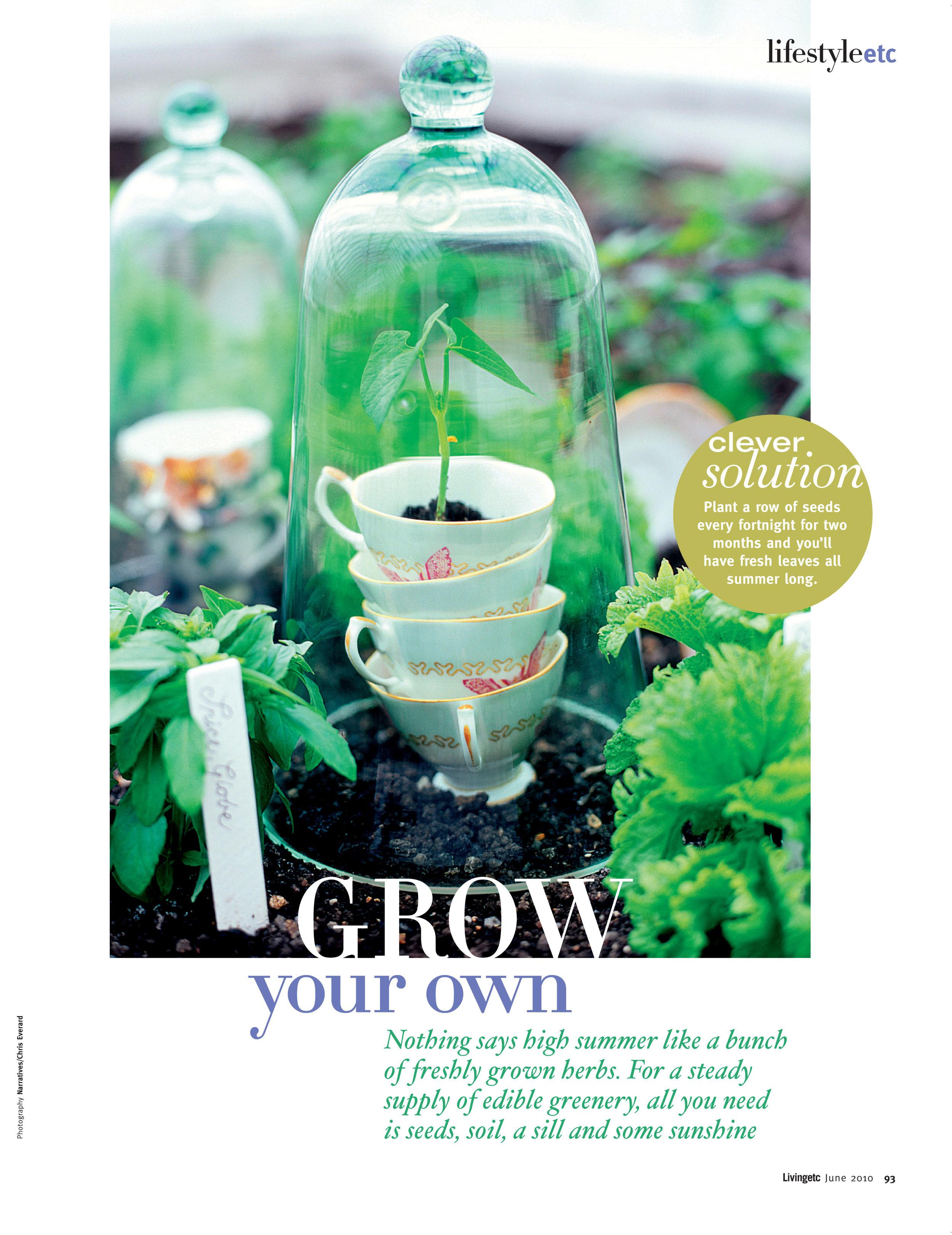 Eat Grow Plant.jpg