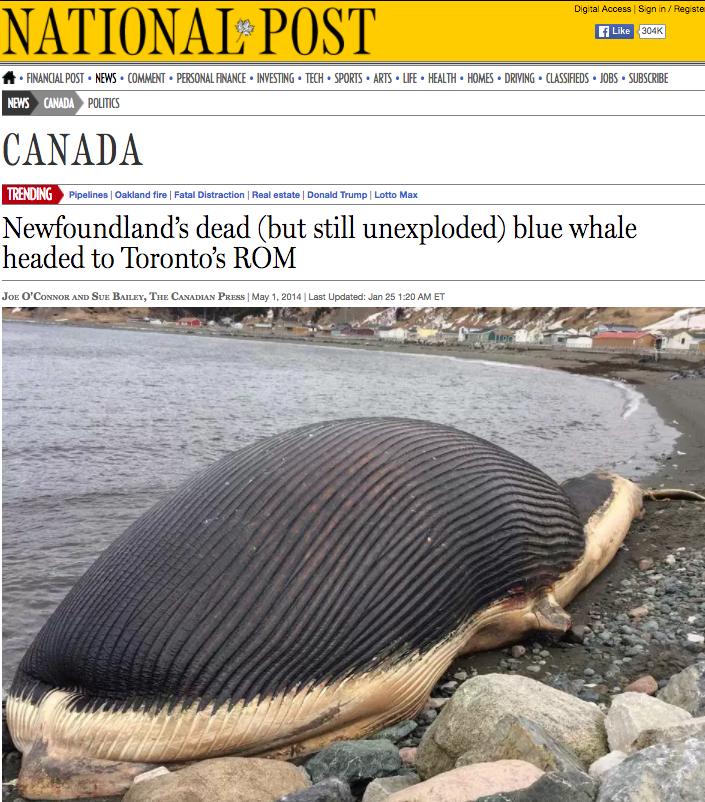 National Post  - May 1, 2014