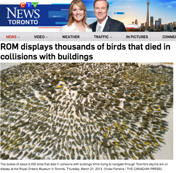 CTV  - March 22, 2013