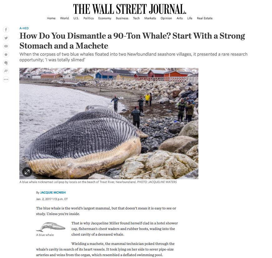 Wall Street Journal  - January 2, 2017